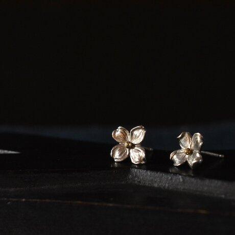 hanamizuki earringsの画像