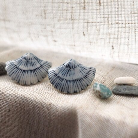 貝殻の耳飾り(ピアス)の画像