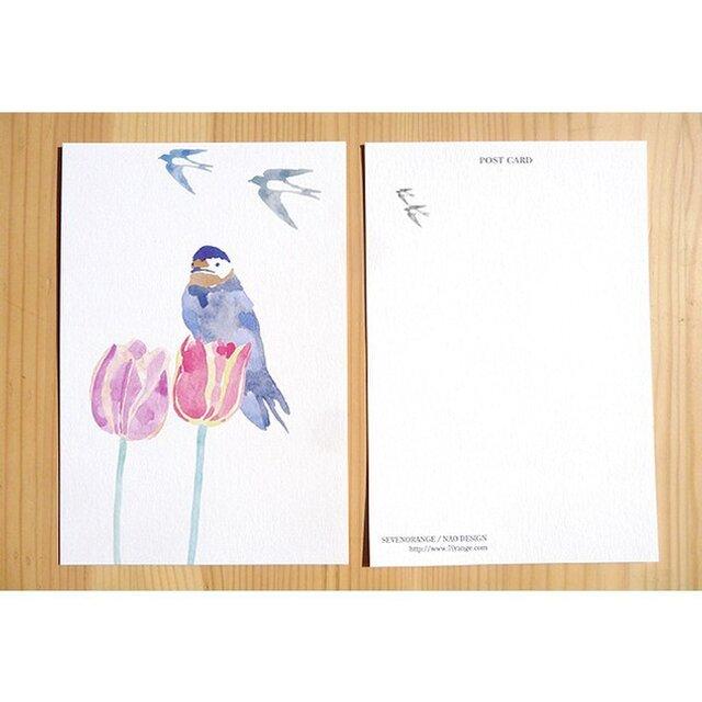 ポストカード(チューリップとつばめ)(2枚入り)の画像1枚目