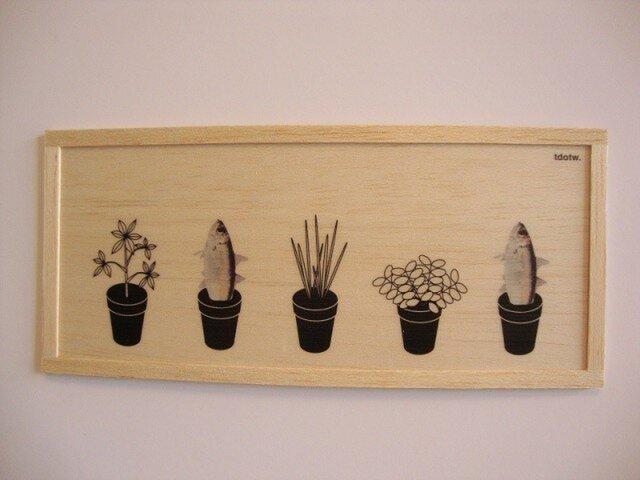 Fish plantの画像1枚目