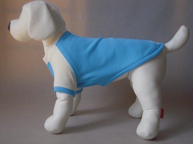 犬服 小型犬用ラグランTシャツ(水色&白)の画像1枚目