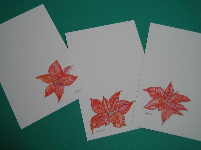 ハガキ 冬の彩り 【ポインセチア3種】 (各1枚 計3枚)の画像1枚目