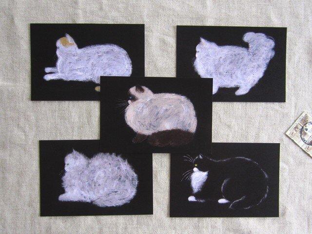 flat-facedcats ポストカードセットの画像1枚目