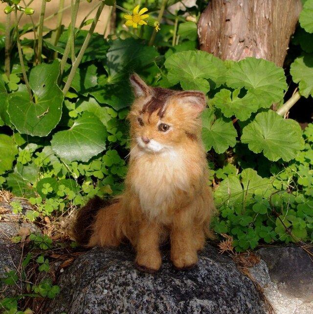 羊毛フェルトの猫人形(ソマリ)の画像1枚目