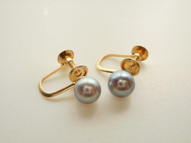 5.6ミリブルーグレイあこや真珠イヤリングの画像1枚目