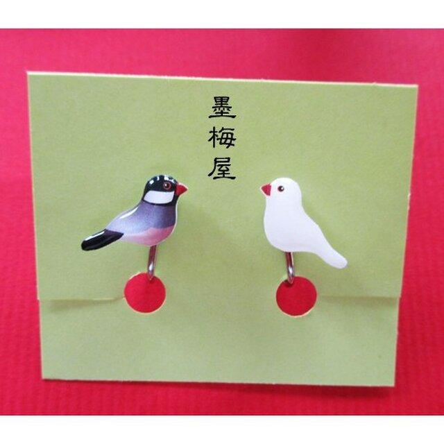 文鳥と白文鳥イヤリングの画像1枚目