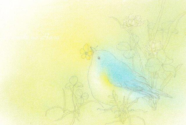 お好みポストカード3枚セット【A】あなたの幸せを思うの画像1枚目