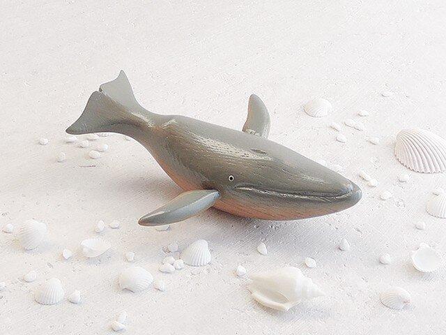 シロナガスクジラの画像1枚目