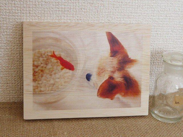木製アートフォトパネル 003の画像1枚目