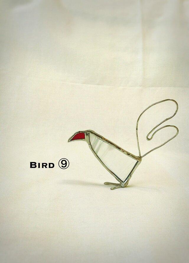 鳥 ⑨の画像1枚目
