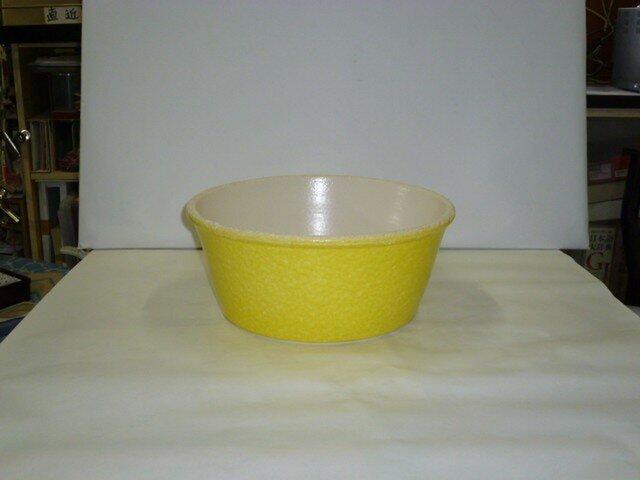 鮮やかめだか鉢の画像1枚目