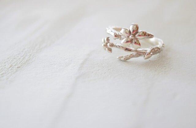 【桜リング】–指輪–の画像1枚目