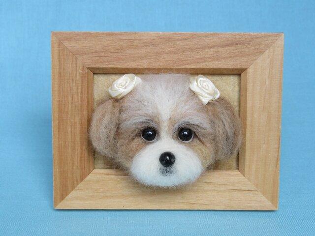 シーズー犬 フレーム の画像1枚目