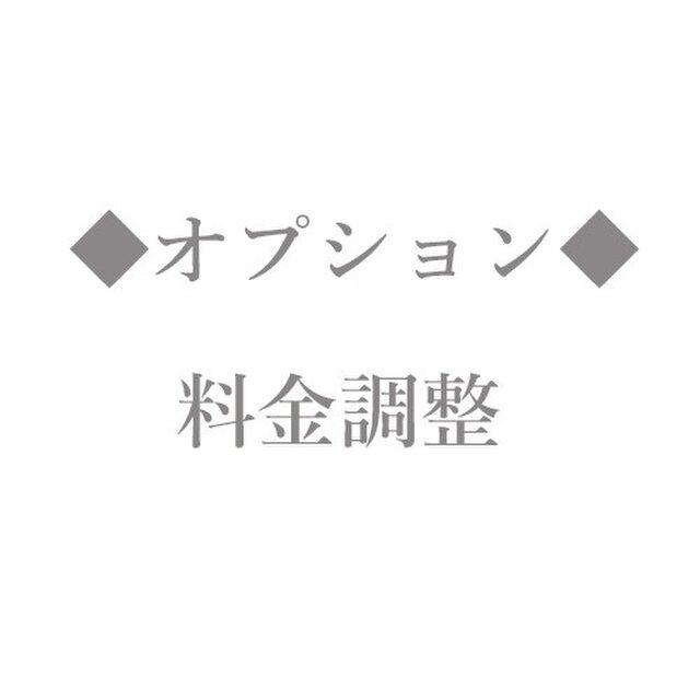オプション【料金調整】の画像1枚目