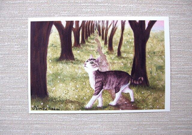 「桜舞う道に猫」<ねこ>(お好きなポストカード2枚)の画像1枚目