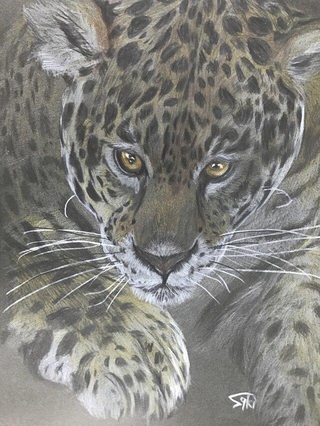 絵画【豹】の画像1枚目