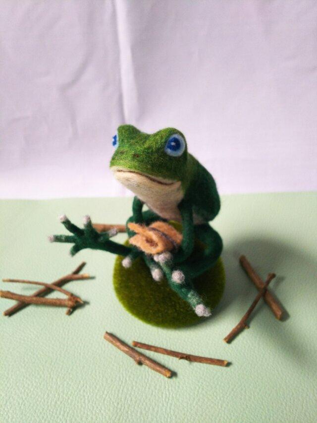 蛙のモスの画像1枚目
