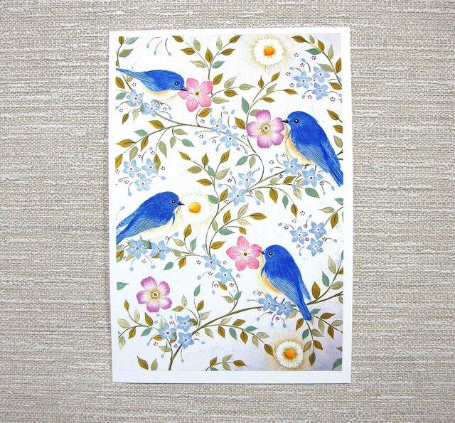 お好きなポストカード2枚。「花と小鳥」の画像1枚目