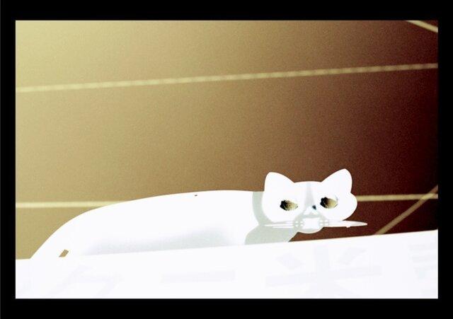 スチル・ライフ - Cat #2.1 -の画像1枚目