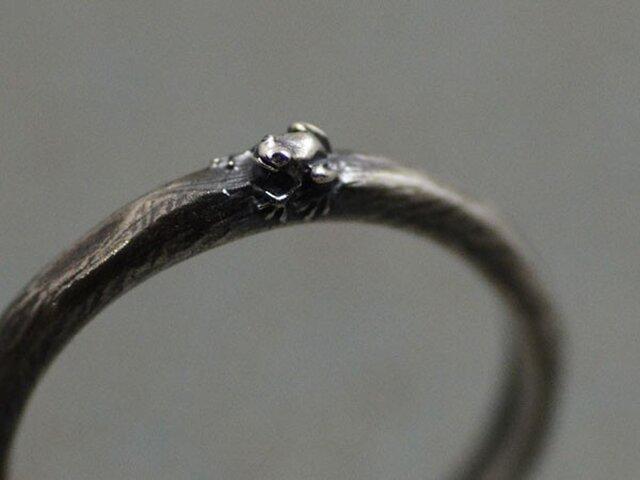 よく見たらカエルリング ~アマガエルバージョン~ たぶん世界で一番小さい蛙の指輪の画像1枚目