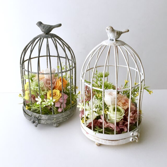 Flower in a cageの画像1枚目
