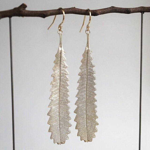 Banksia leaf earrings {EP055SV}の画像1枚目
