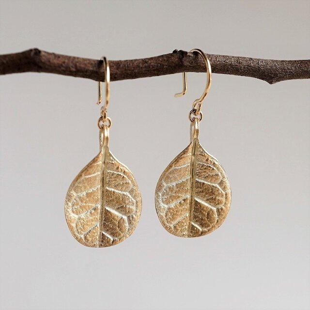 Feijoa leaf earrings (small) {EP052K10}の画像1枚目