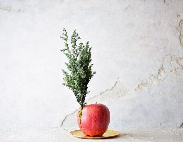 縫われたりんごと植物の画像1枚目