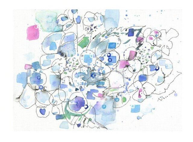 祈り(額紫陽花)の画像1枚目