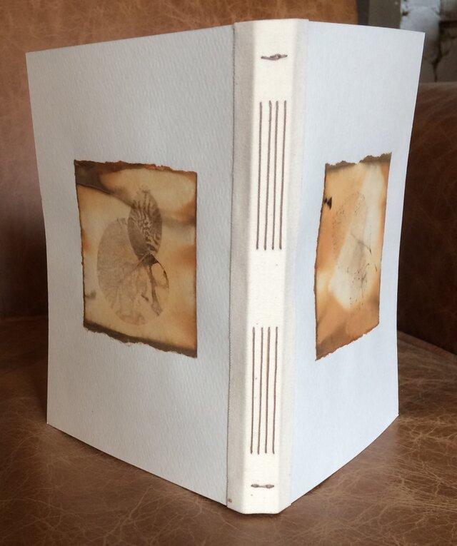 ユーカリの葉のエコプリントのコラージュのノートの画像1枚目