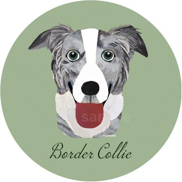 ボーダー コリー(ブルーマール)《犬種名ステッカー/中型犬》の画像1枚目