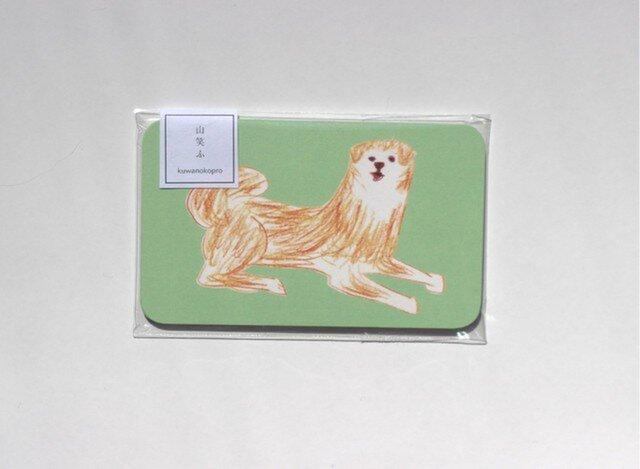 秋田犬のメッセージカードの画像1枚目