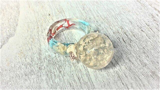 赤い海藻の海と空玉の指輪の画像1枚目