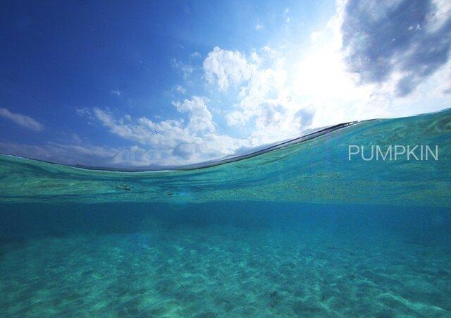 ゆらめき  PH-A4-03    写真 きらめき 半水面 水面 透明度 奄美大島   の画像1枚目