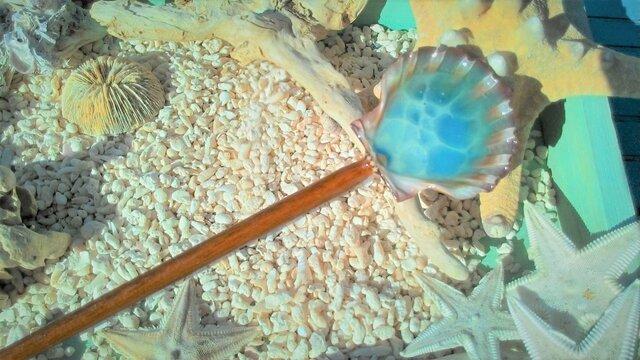 蓄光☆木彫り風イタヤガイの海かんざしの画像1枚目