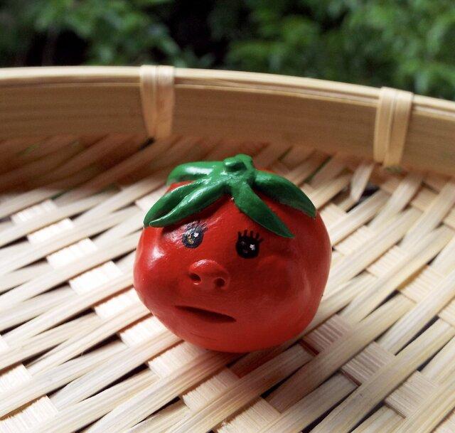朝採り♪ プチトマトちゃんの画像1枚目