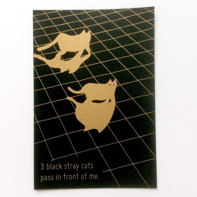 「3匹の黒い野良猫が目の前を通り過ぎる」ポストカードセットの画像1枚目