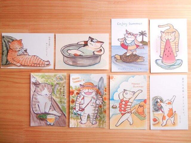 猫のポストカード:夏のご挨拶B:お得8枚セットの画像1枚目