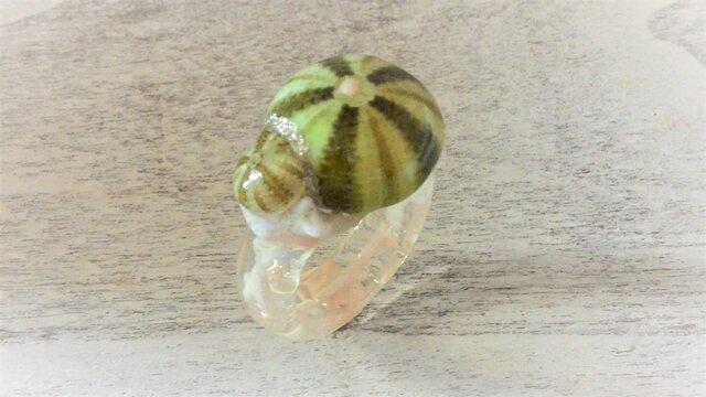 蓄光☆2つの小ウニの指輪の画像1枚目