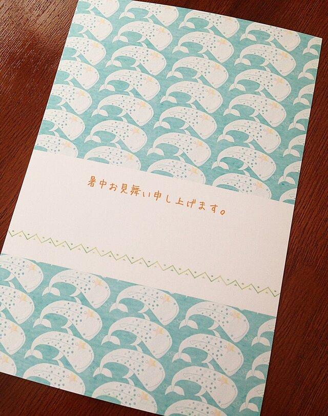 【暑中見舞いカード/5枚セット】夏の海はジンベイだらけ?!の画像1枚目