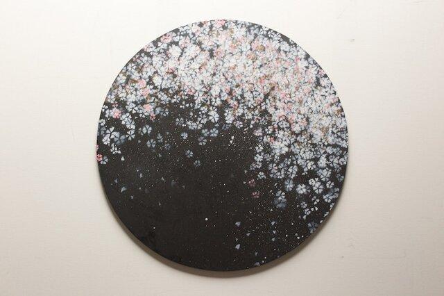 Sakura /夜桜の円形キャンバス作品の画像1枚目