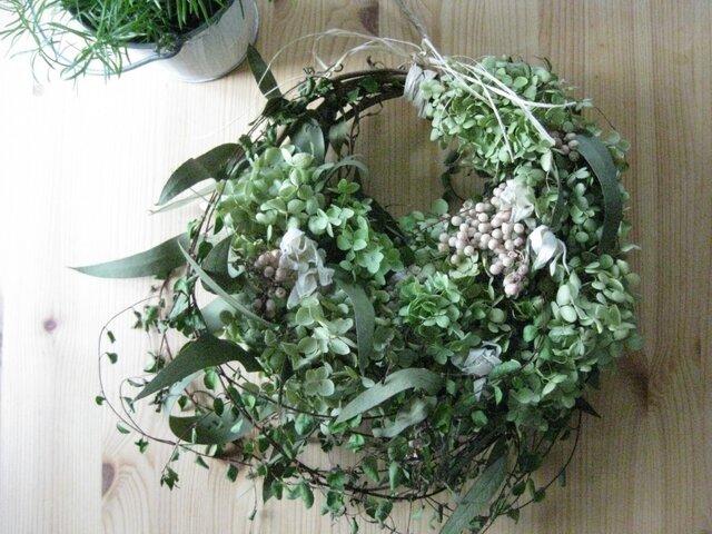 アナベルのsummer-wreathの画像1枚目