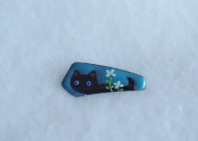 七宝 黒猫散歩の画像1枚目