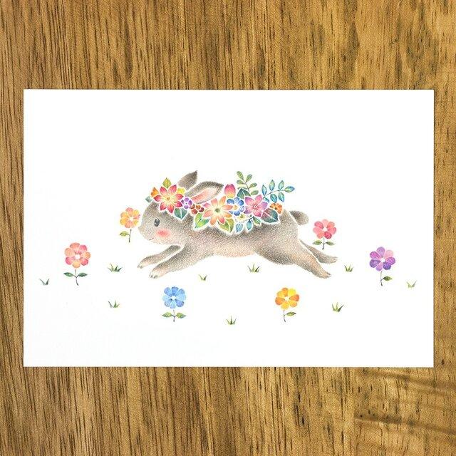 """4枚セット。絵本のような。ポストカード""""花を飾ったうさぎのミニィ"""" PC-337の画像1枚目"""