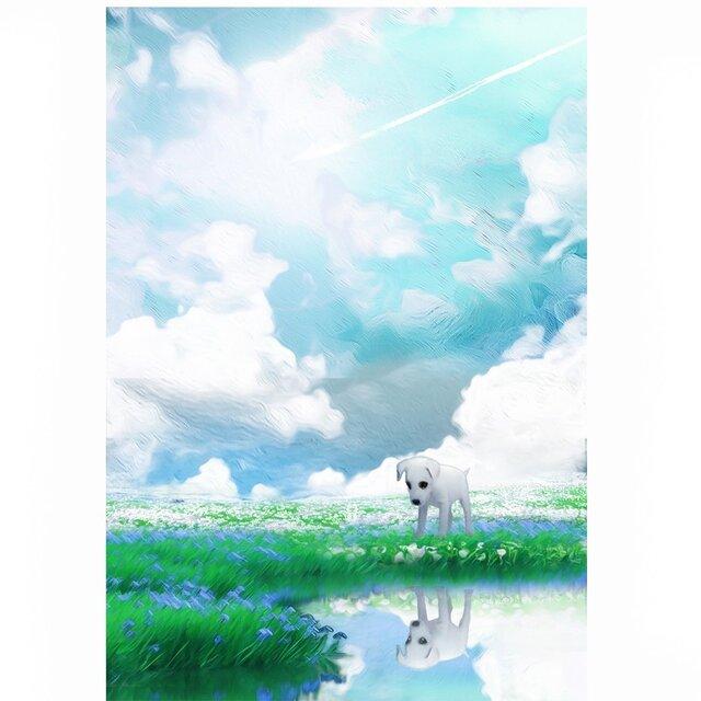 飛行機雲【A4サイズ】の画像1枚目