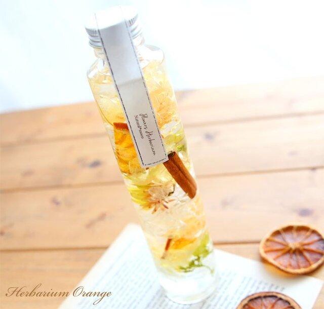 ハーバリウム *柑橘- Citrus-の画像1枚目