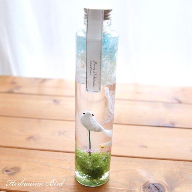 ハーバリウム 緑・小鳥・空- Green・Bird・Sky -の画像1枚目