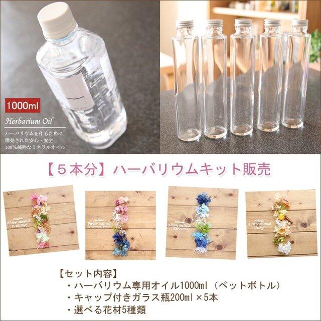 【5本分】ハーバリウムお試しキット(オイル1本、ガラス瓶5本、花材セット5種類)の画像1枚目