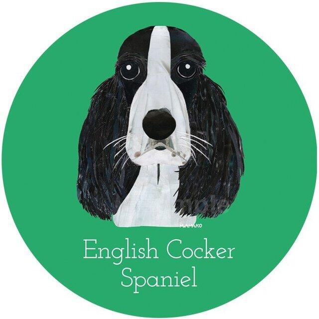 イングリッシュ・コッカー・スパニエル(白黒)《犬種名ステッカー/小型犬》の画像1枚目