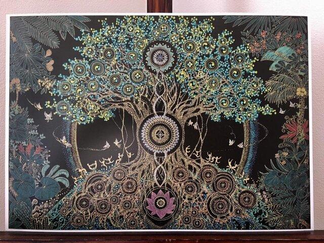 曼荼羅屋オリジナルプリント「ガジュマルⅠ」B4サイズの画像1枚目